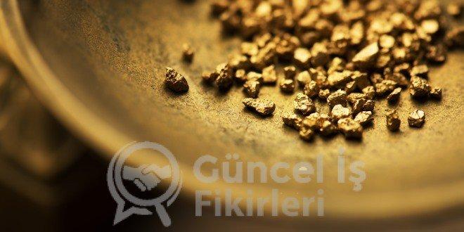 Altın Yatırımı Yaparken Dikkat Edilmesi Gereken Noktalar